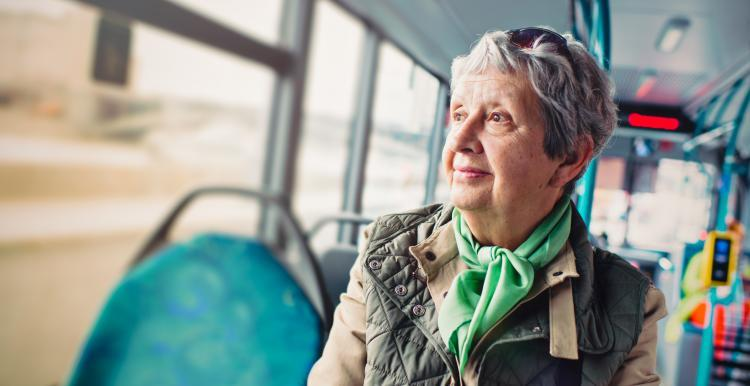 Lady on the bus